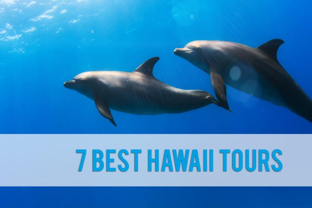 best Hawaii tours