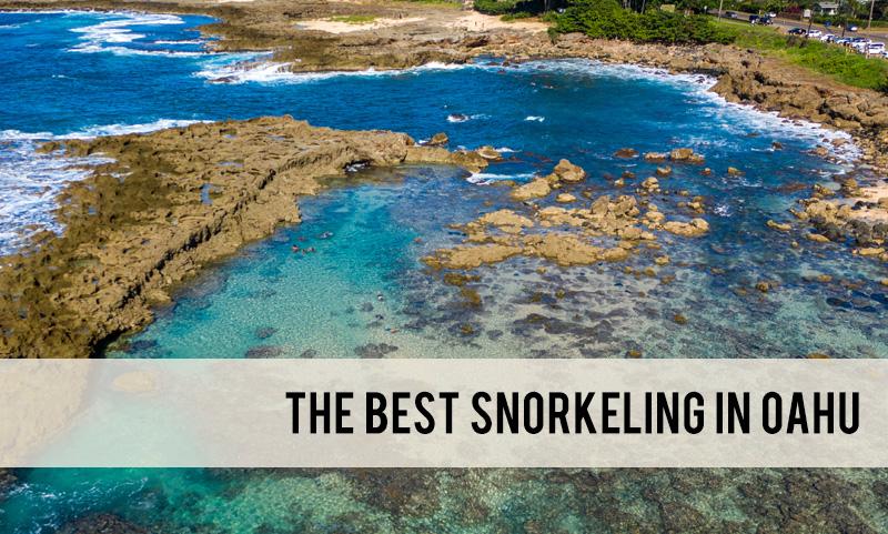 the best Oahu snorkeling